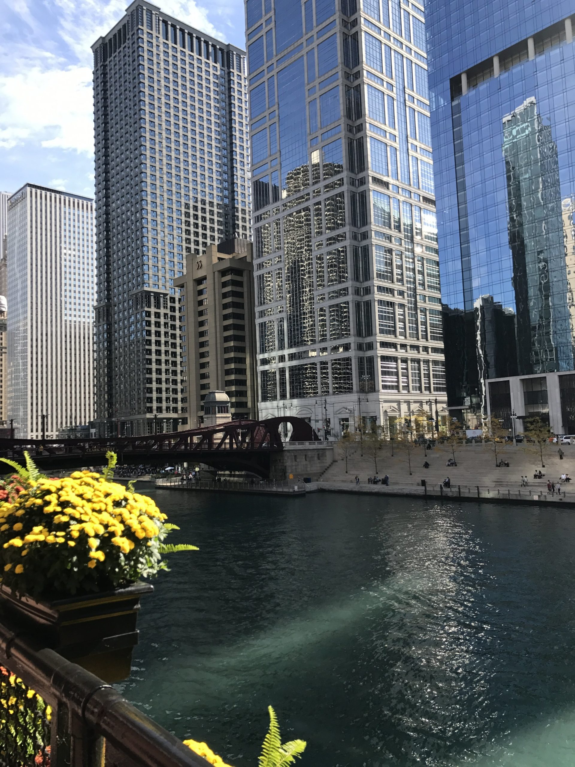 downtown chicago with the river