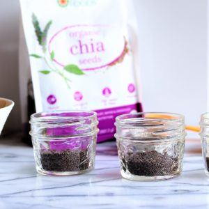 two small bowls of chia seeds with bag for chia seed pudding